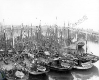 Dutch Herring Boats